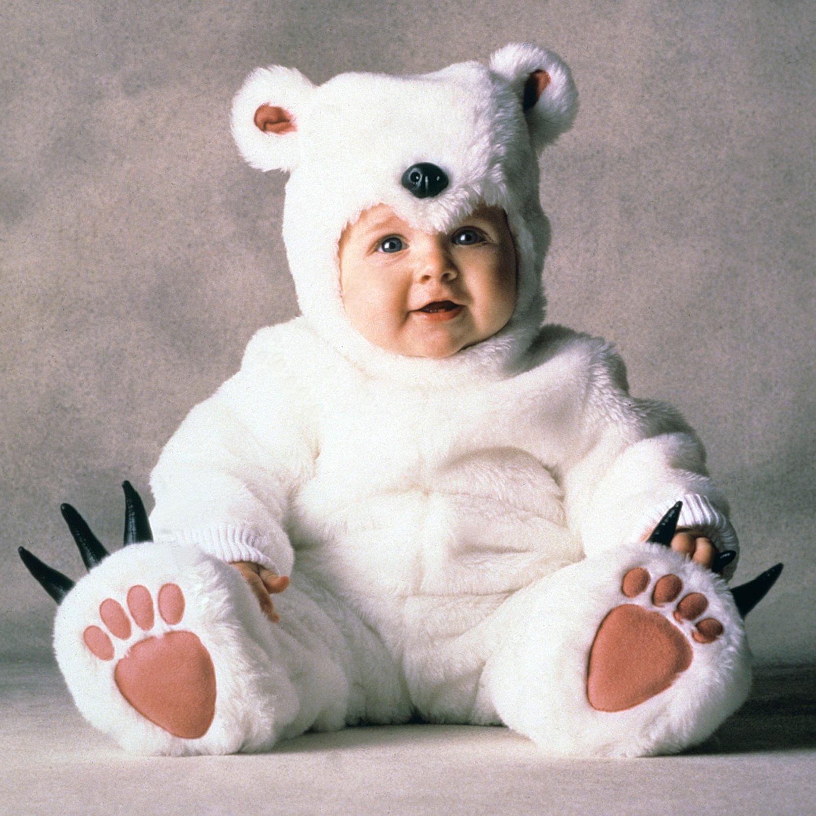 babybear.jpg
